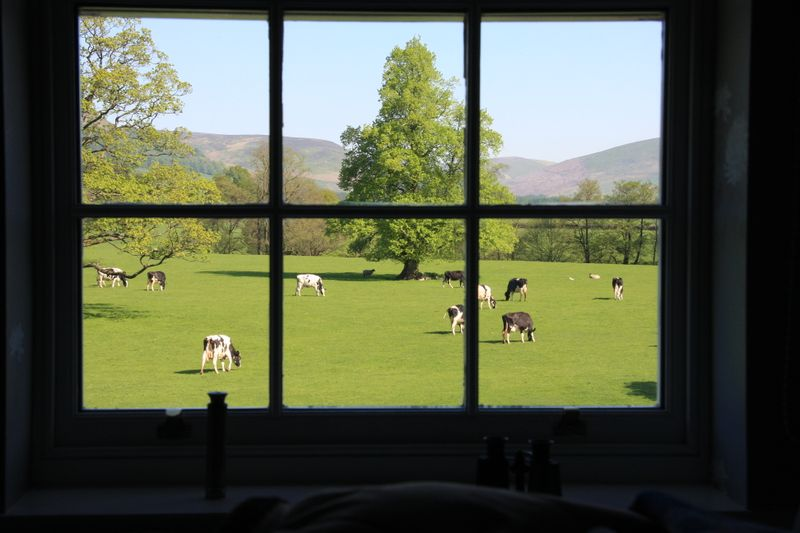 View out window of inn at whitewell