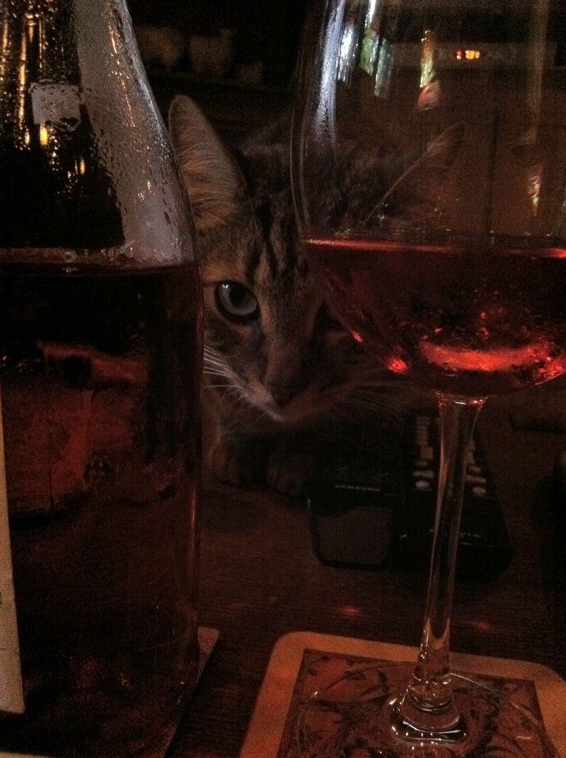 Stig waits on porchetta